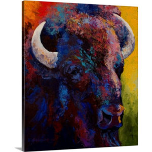 Bison Head Study by Marion Rose Art Print on Canvas
