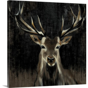 Young Buck by Liz Jardine Art Print on Canvas