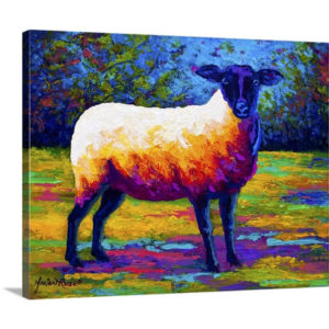 Suffolk Ewe II by Marion Rose Art Print on Canvas