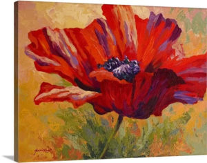Red Poppy II by Marion Rose Art Print on Canvas