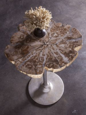Artistica | Peck Speck Spot Petrified Wood Veneer End Table