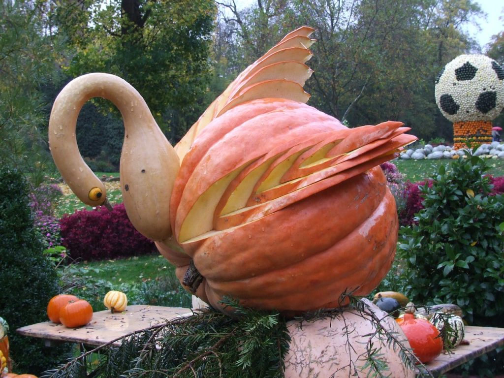 Halloween Pumpkin Carving Ideas | Carved Swan