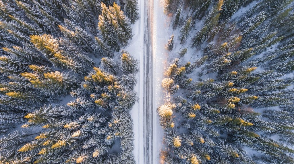 Frozen Road Through Wintry Forest