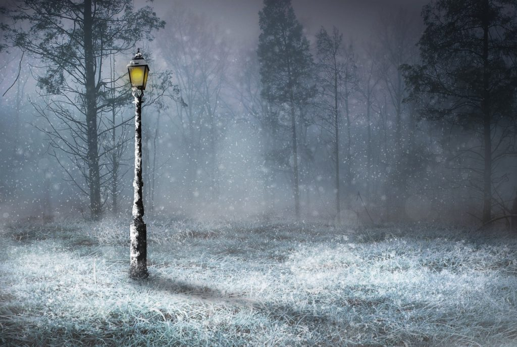 Lamp Post in Frozen Park Winter Scene
