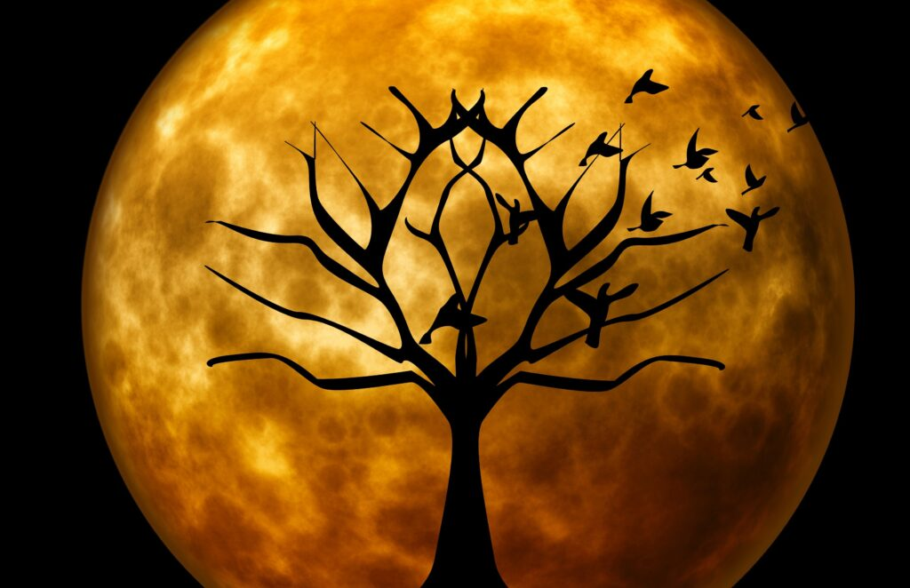 Moon Tree | Halloween Pictures You Can Print