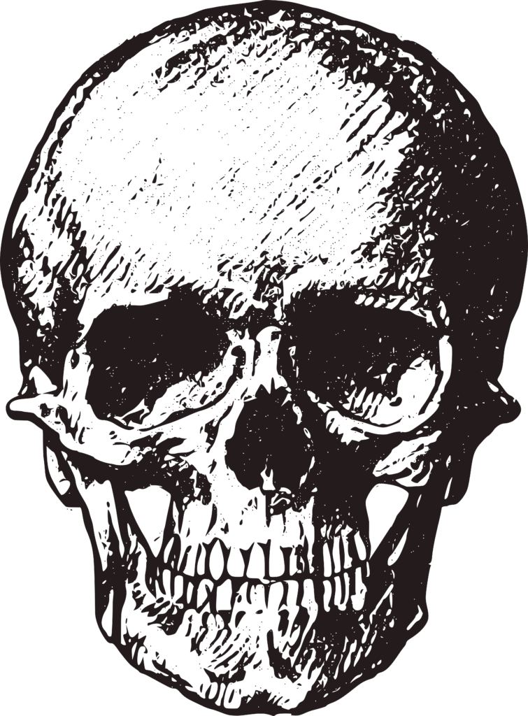 Skull Drawing Free Halloween Printable Clip Art
