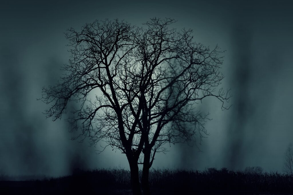 Tree Silhouette | Printable Halloween Art