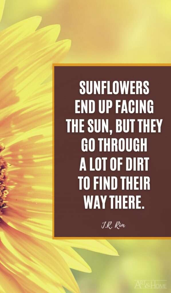 Sunflowers end up facing the sun, but they go through a lot of dirt to find their way there. J.R. Rim quote
